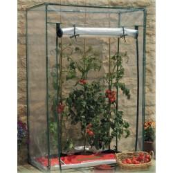 serra pomodori copertura in pvc