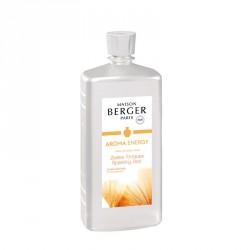 Fragranza di ricarica per profumatore - zestes toniques - da 1 lt