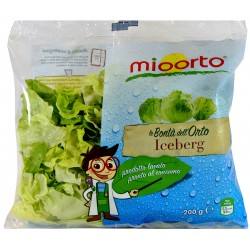 mioorto insalata iceberg gr.200
