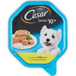 Cesar vaschetta senior pollo riso - gr.150