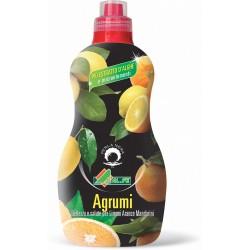 ALFE concime per agrumi lt.1