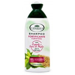 L'Angelica shampoo uso frequente ml.250