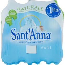 Sant'Anna Naturale Sorgente Rebruant 6 x 1 L