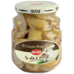 Nova funghi porcini olio vetro - ml.314