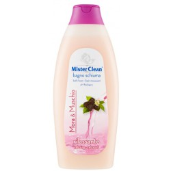 Mister clean bagno mora/muschio - ml.750