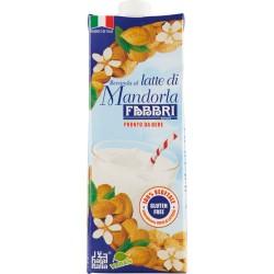 Fabbri Bevanda al latte di Mandorla 1 Lt.