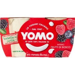 Yomo 100% Naturale frutti di bosco 2 x 125 gr.