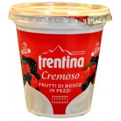 Trentina yogurt frutti di bosco gr.330