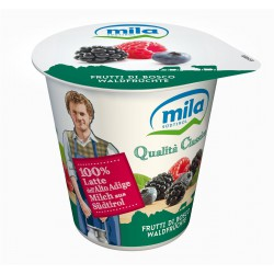Mila yogurt frutti bosco gr.125