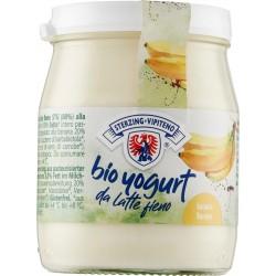 Vipiteno yogurt bio banana gr.150