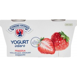 Vipiteno yogurt fragola x 2