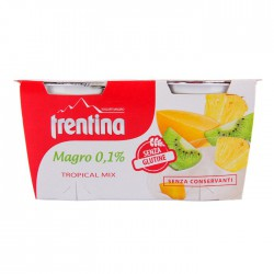 Trentina yogurt tropical x 2