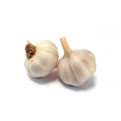 aglio bianco gr.200
