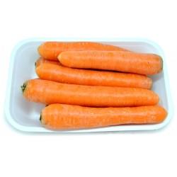 carote kg.1