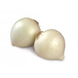 cipolle bianche in rete MX kg.1