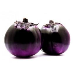 melanzane viola kg.1