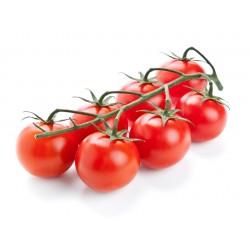 pomodoro ciliegino gr.1000
