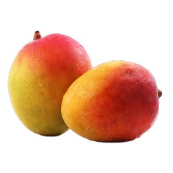 mango gr.400