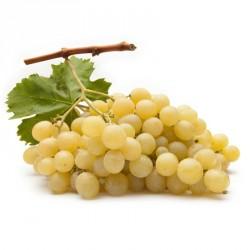 uva bianca Vittoria kg.1