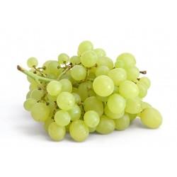 uva bianca spagna kg.1