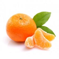 clementine cal.4 kg1