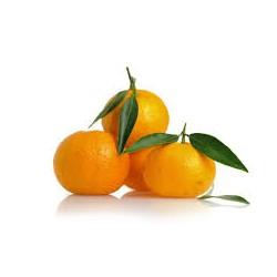 Clementine spagna kg.1