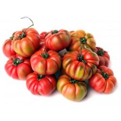 Pomodori merinda gr.1000
