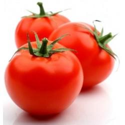 Pomodoro rosso marocco gr.1000