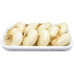 Cipolle bianche novelle march. kg.1