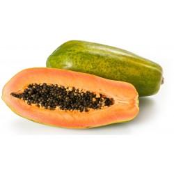 Papaya formosa Brasile kg.1,5 circa