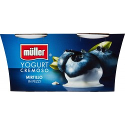 Muller yogurt mirtillo cremoso gr.125x2