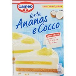 Cameo torta Ananas e Cocco 265 gr.