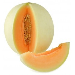 Melone liscio kg.1,7 circa