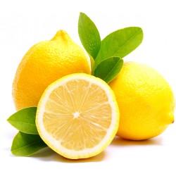 Limoni rete Sud Africa gr.500