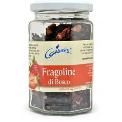 Gardin infuso alle fragoline di bosco gr.100