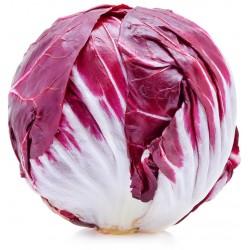 Radicchio rosso tondo italia kg.1