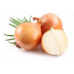 Cipolla ramata kg. 1