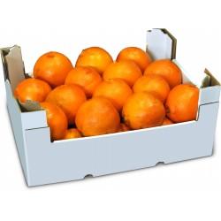 Arance tarocco cal.4 cat I kg. 7,6 circa