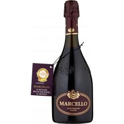 Marcello vino lambrusco etichetta viola cl.75