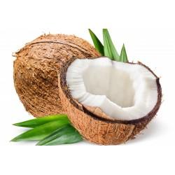 Noce di cocco gr.700 circa