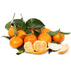 Clementine foglia Spagna kg.1
