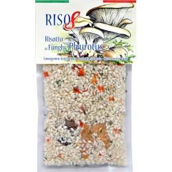 Alanfood risotto ai funghi pleurotus gr.200
