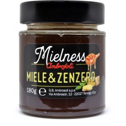 Ambrosoli mielness miele e zenzero gr.180