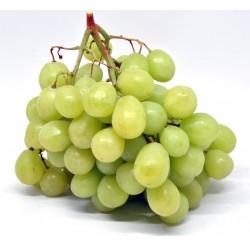 Uva early sweet seedless za kg.1