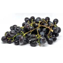 Uva nera adora seedless gr.500