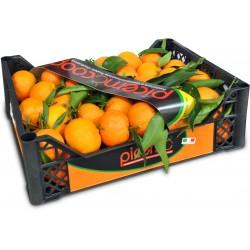 Clementine cal.1 kg.5,7 cassetta