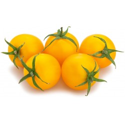 Pomodoro ciliegino giallo gr.500