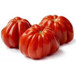 Pomodoro cuore di bue gr.500